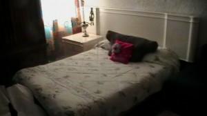 rento  cuartos  amueblados  para damas  col. roma  baÑo propio y semi prop.